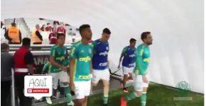 reprodução Tv Palmeiras